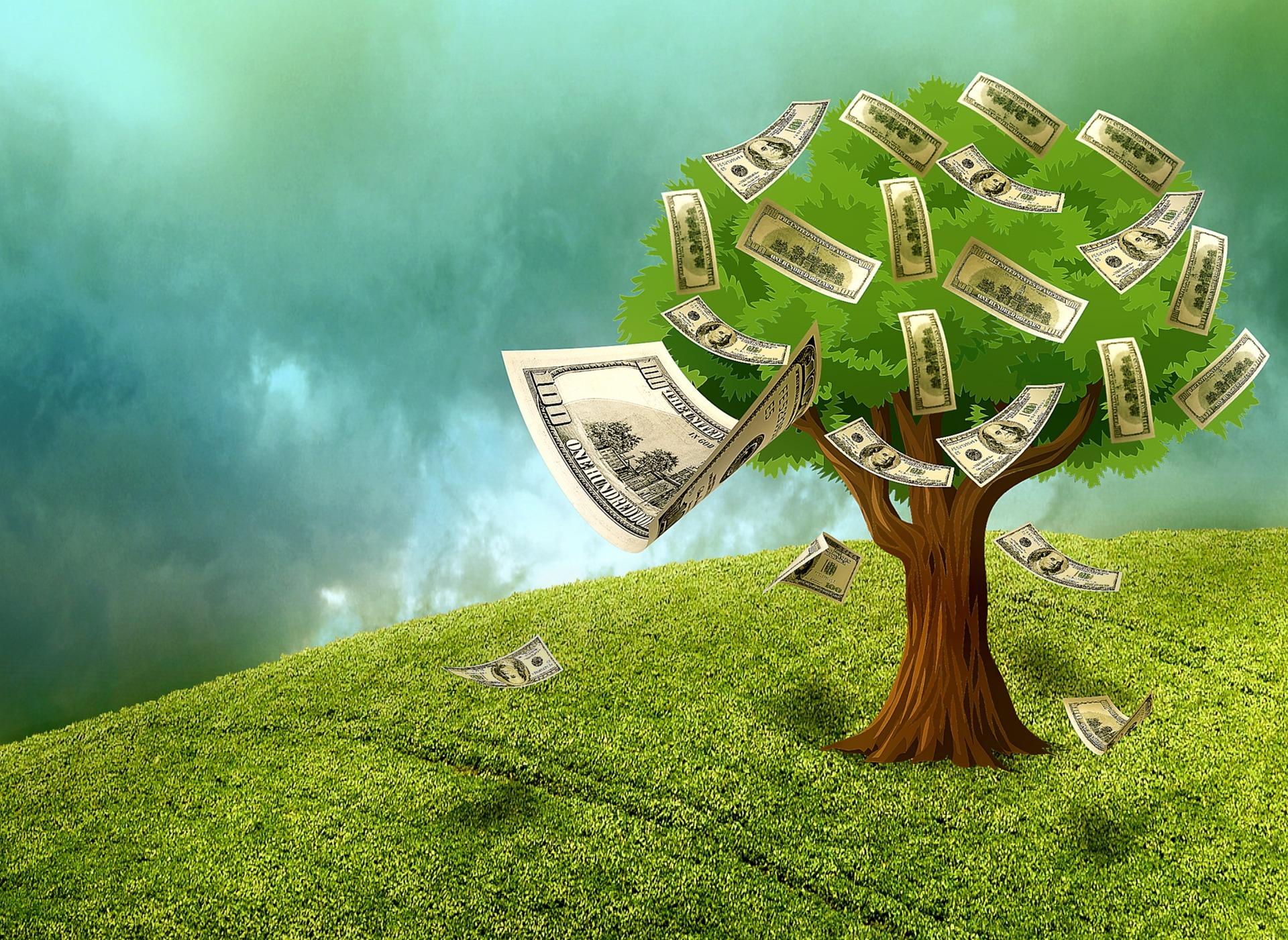 Geld lenen als zelfstandige, is dat verstandig?